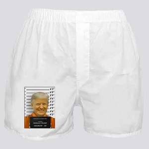 Trump Mugshot Photo Moron 45 Boxer Shorts