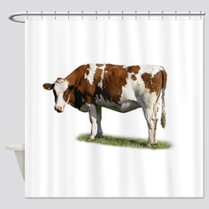 cow photo Shower Curtain