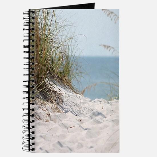 Sandy Beach Willows Journal