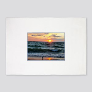 Sunset, seagull, photo! 5'x7'Area Rug