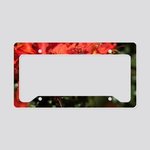 Honeysuckle Monarch Butterfly License Plate Holder