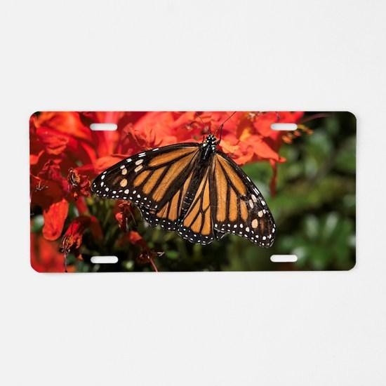 Honeysuckle Monarch Butterf Aluminum License Plate
