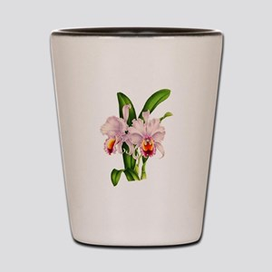 Violet Whisper Cattleyea Orchid Shot Glass