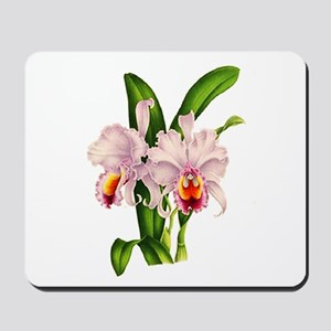Violet Whisper Cattleyea Orchid Mousepad