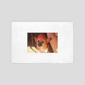 chihuahua portrait closeup warm pinks 4' x 6' Rug
