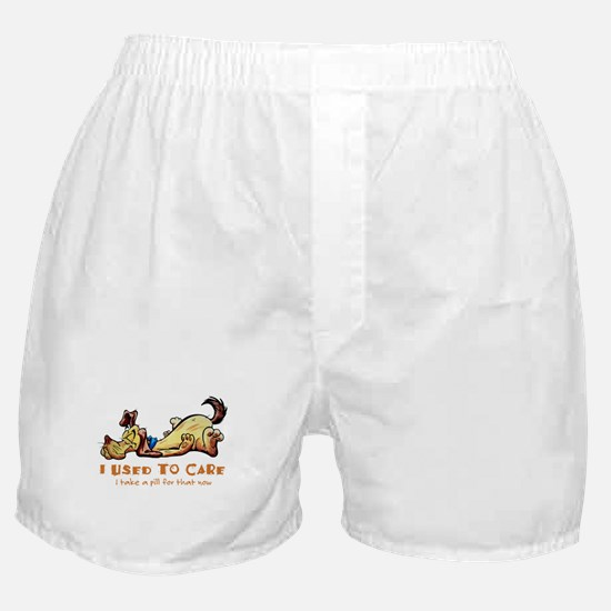 IUsedToCare.png Boxer Shorts