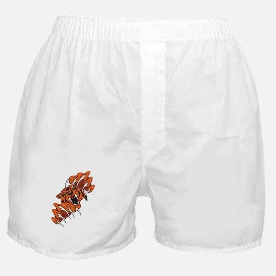 Clawing Ferocious Cougar Boxer Shorts