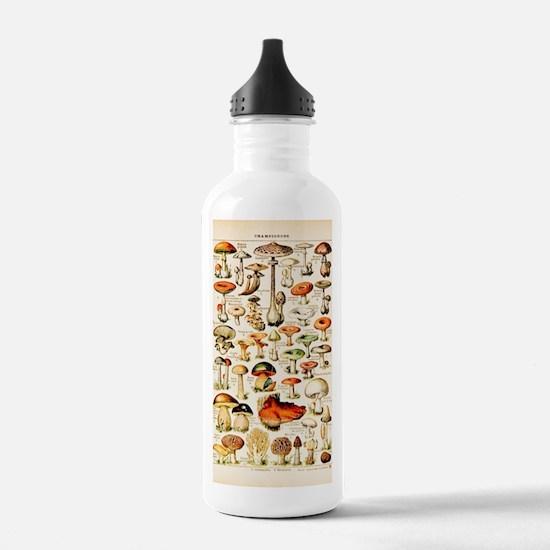 Vintage Mushroom Print Water Bottle