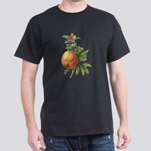 Vintage Pomegranate by Women's Cap Sleeve T-Shirt