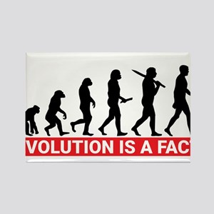 Evolution is a fact Magnets