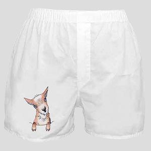 KiniArt Pocket Goat Boxer Shorts