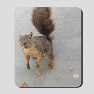 squirrel'n around Mousepad