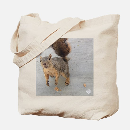 squirrel'n around Tote Bag
