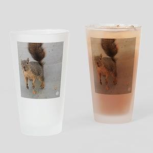 squirrel'n around Drinking Glass