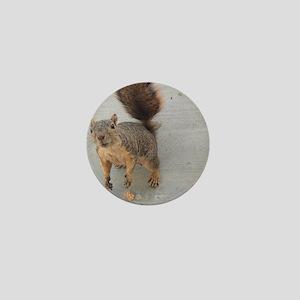 squirrel'n around Mini Button