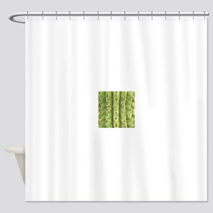 Spiney Cactus Shower Curtain