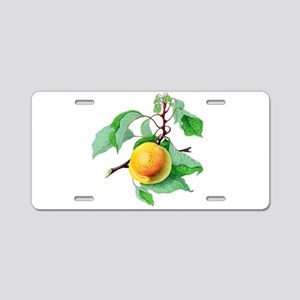 Apricot Aluminum License Plate