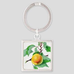 Apricot Keychains