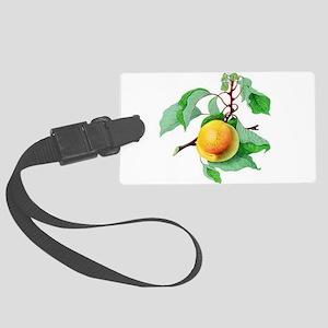 Apricot Luggage Tag