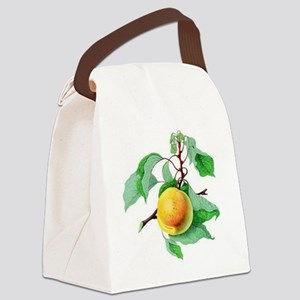 Apricot Canvas Lunch Bag