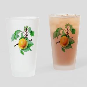 Apricot Drinking Glass