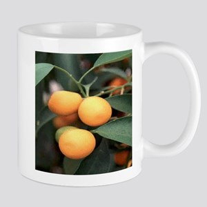 Kumquat Mugs