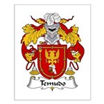 Temudo Family Crest Small Poster
