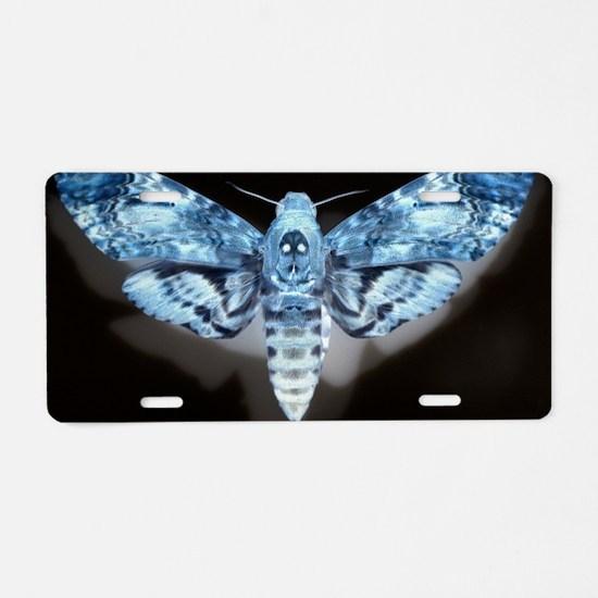 Moth Aluminum License Plate