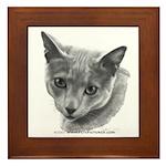 Russian Blue Cat Framed Tile