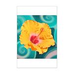 Orange Tropical Flower on Teal Posters