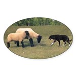 Dog Meets Sheep Oval Sticker