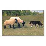 Dog Meets Sheep Rectangle Sticker