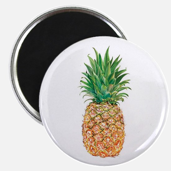 Pineapple Watercolor Magnets