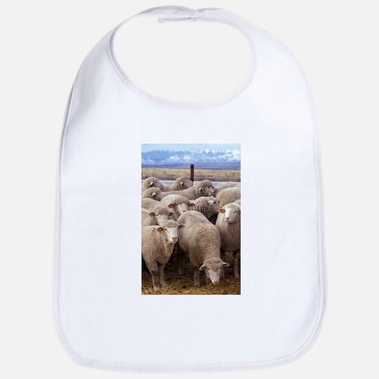 Sheep Herd Bib