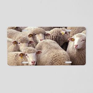 Sheep Herd Aluminum License Plate