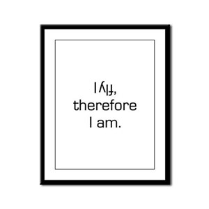 I Fly Inverted Therefore I Am Framed Panel Print
