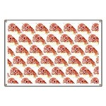 Chambered nautilus Pattern Banner