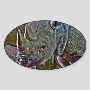Black Rhino Sticker (Oval)