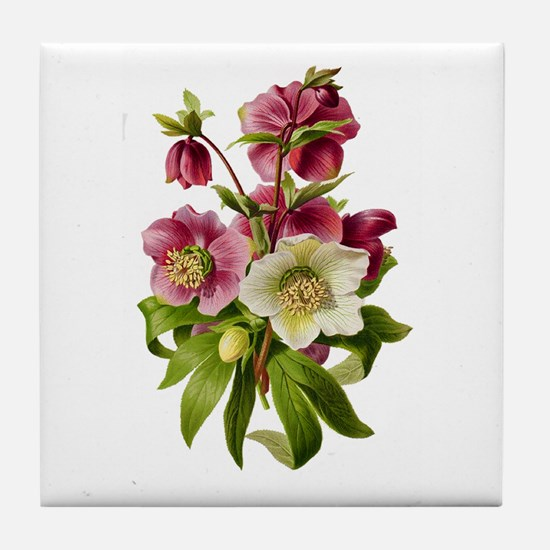 Purple and White Hellebores Tile Coaster