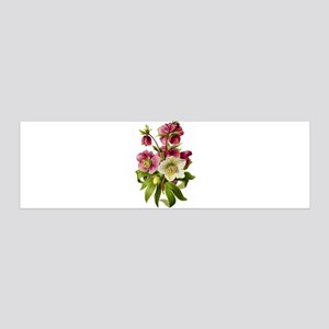 Purple and White Hellebores 36x11 Wall Decal