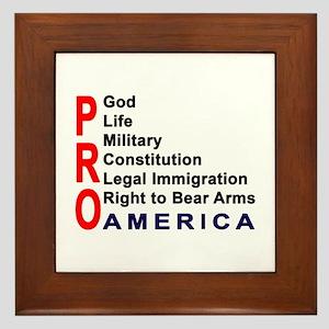 Pro America Framed Tile