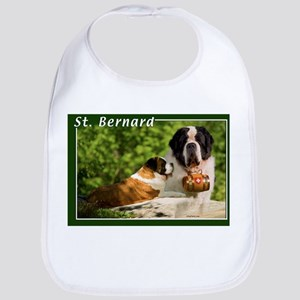 St Bernard-1 Bib
