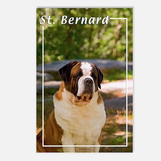 St Bernard-4 Postcards (Package of 8)