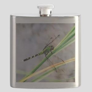 Eastern Pondhawk Dragonfly Flask