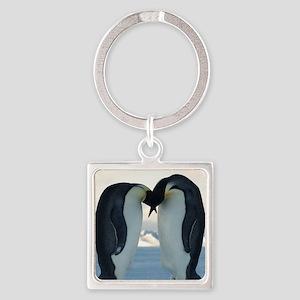 Emperor Penguin Courtship Keychains