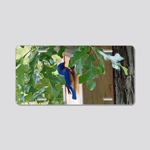 Birdbird at Birdhouse Aluminum License Plate