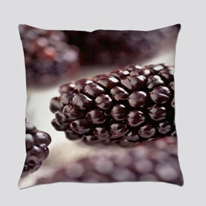 Blackberry Everyday Pillow