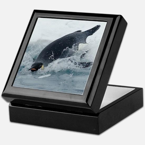 Diving Emperor Penguin Keepsake Box