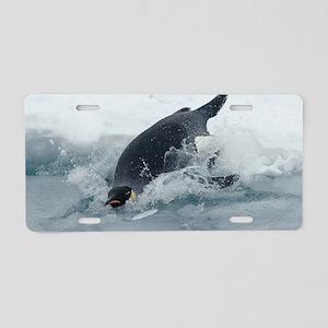 Diving Emperor Penguin Aluminum License Plate