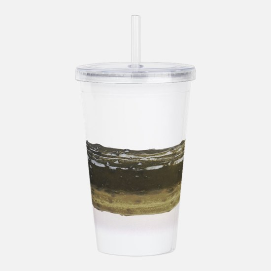 Dill Pickle Acrylic Double-wall Tumbler